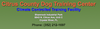Citrus County Dog Training